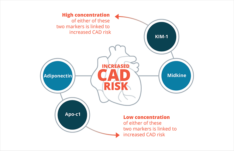CAD risk biomarkers
